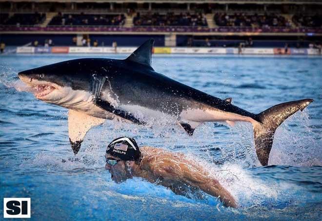 Chuyện của sao 25/7: Michael Phelps bị chỉ trích dữ dội vì thi bơi với cá mập giả